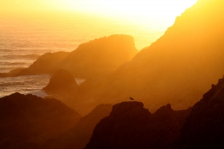 Farallon Sunset