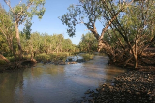 Adcock River