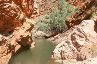 Mt Leake Gorge