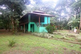 Tortuguero House