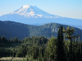 Pacific Crest Trail View